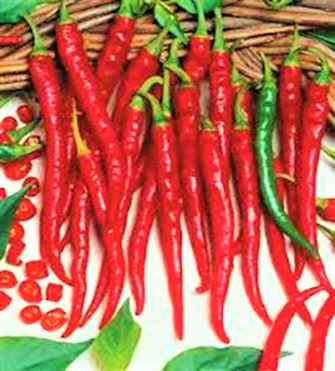 Long Cayenne chili